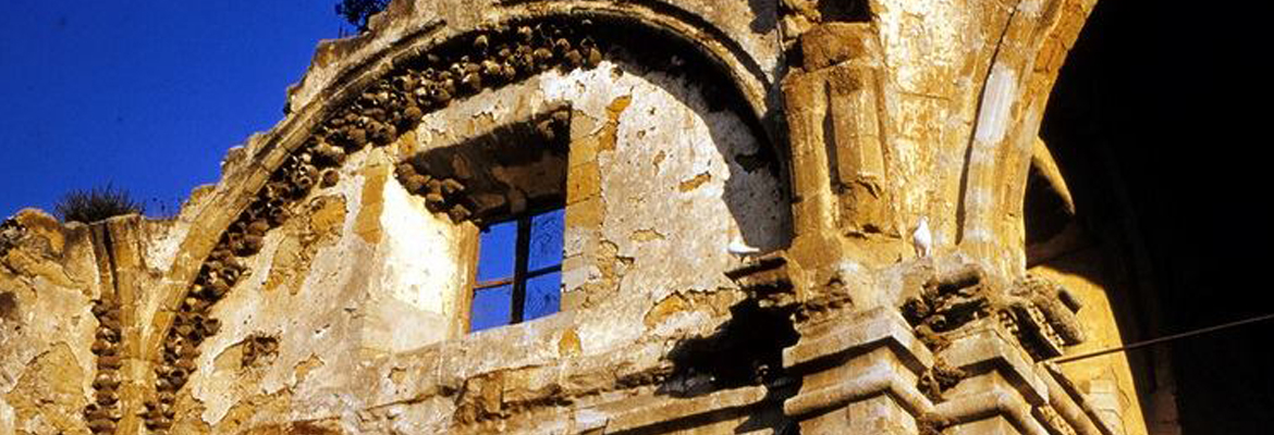 Swallow Nests on the Great Stone Church Ruins